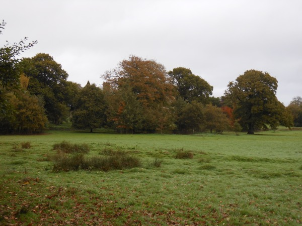 Battlefield at Hastings